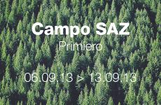 Campo SAZ – 2013